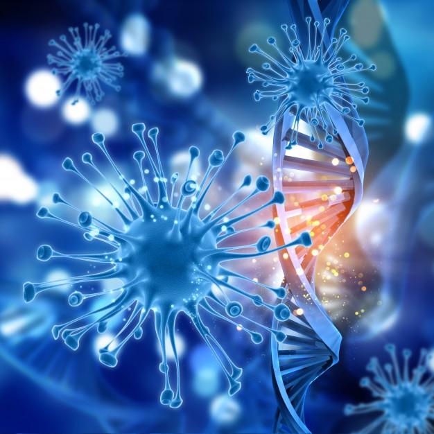 Поддержка иммунитета-защита от вируса